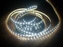 Bobina 5mt strip led 5050 bianca fredda 5900-6400K IP65