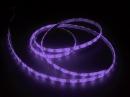 250CM STRIP LED 3528 VIOLA IP65